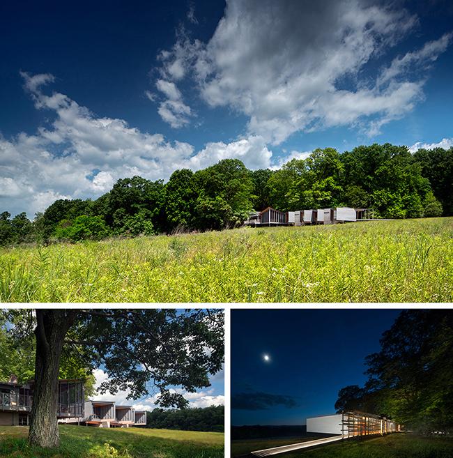 2-high-meadow